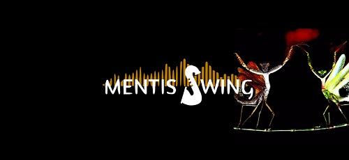 Mentis Swing